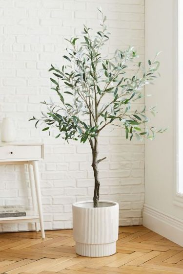 1574200542-faux-olive-tree-large-white-fluted-planter-set-o